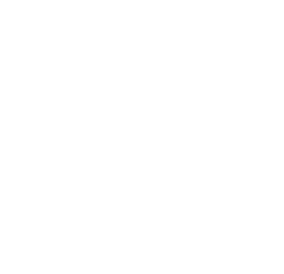 icona Grafica